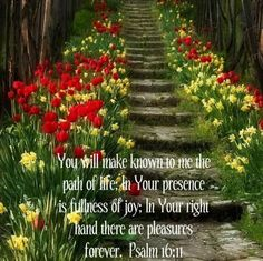 Psalm 16:11 You will make known to me the path of life; In Your presence is fullness of joy; In Your right hand there are pleasures forever.