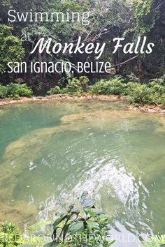 This is an awesome trip from San Ignacio, Belize