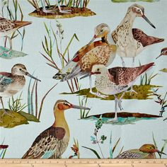 Golding by P/Kaufmann Waterfowl Duck Spring Fabric Light Blue Background, Novelty Fabric, Home Decor Fabric, Forest Animals, Decorative Pillow Covers, Slipcovers, Brown And Grey, Shades Of Blue, Fabric Design