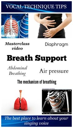 Breath support is about managing the air pressure below your vocal cords. Your diaphragm has a very important role in the  process of breath support. Watch the two videos and learn how to improve your breath support. Enjoy!