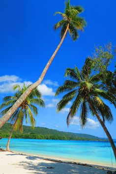 Lonnoc Beach in Espiritu Santo Island, Vanuatu - one of the prettiest tropical beaches in the world!