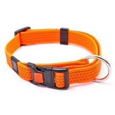 Reflex Halsbånd Orange 40-55cm Orange, Belt, Bracelets, Accessories, Jewelry, Belts, Waist Belts, Jewlery, Bijoux