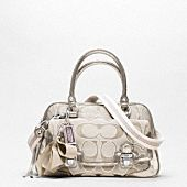 Love the structure of this Coach purse :) Can I carry this everywhere?