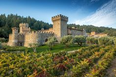 Castello Di Amorosa Winery - Napa Valley. To learn more about #SanFrancisco | #NapaValley click here: http://www.greatwinecapitals.com/capitals/san-francisco-napa-valley