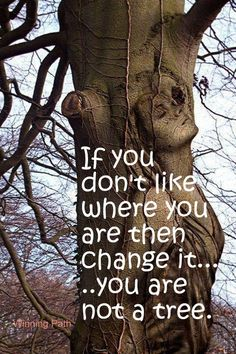 your roots may be firmly rooted like a tree ☼. Ship Figurehead, Never Been Better, Motivational Quotes, Inspirational Quotes, Having Patience, Handprint Art, Wonder Quotes, Hopes And Dreams, Breath In Breath Out