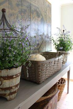 multiple catnip/wooden buckets/iron topiary