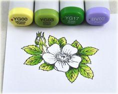 Leaf colors: YG00, YG03, YG17 and BV02 as a shadow shade