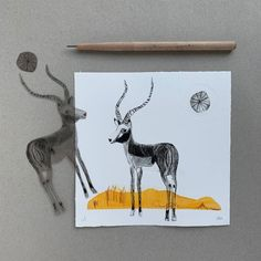 Are you looking for a timeless art gift for your baby nephew or toddler niece? Then this original etching of a cute wild life animal will be perfect for you. Made with high quality materials it will last the test of time becoming an heirloom to your beloved family.  Click through to see more of our original art on paper. #sustainablewallart #ecofriendlybaby #etsy #specialgiftfornewborn #orignalart Safari Nursery, Boho Nursery, Nursery Art, Nursery Ideas, Room Ideas, Scandinavian Nursery, White Nursery, Kids Room Wall Art, Toddler Art