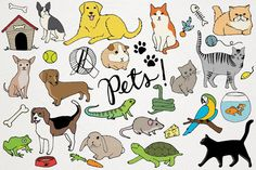 Animals & Pets Illustrations by Lemonade Pixel on Creative Market