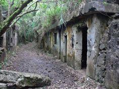 Abandoned WW2 Batteries   Mount Davis, Hong Kong