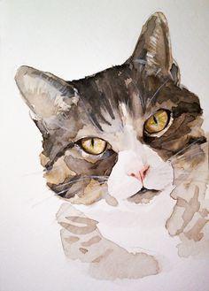 Cat portraits done in watercolor Watercolor Cat, Watercolor Paintings, Watercolors, Abstract, Cats, Artwork, Animals, Behance, Portraits