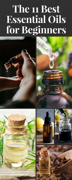Essential oils offer so many benefits but they can also be confusing - there are so many to choose from. These oils are the best places to begin, offering the most power and versatility. #essential #oils #aromatherapy
