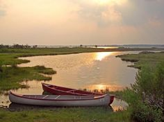 Chincoteague Island, VA...this is where I'm goin!