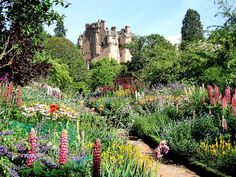 looking up the June border to Crathes Castle by Kiwi Betsy, via Flickr