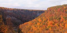 Letchworth State Park, Castile, New York | The 14 Best Places To See Fall Foliage In The U.S.