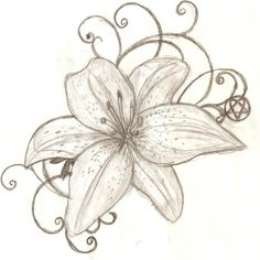lily flowers drawings | tiger-lily-tattoo-designs-tattoo-design-tiger-lily-by-lguest-on ...