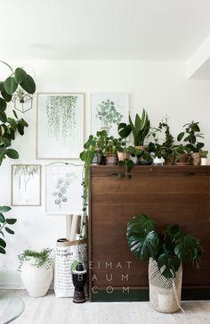 Urban Jungle: Jungle Office by pepper schmidt