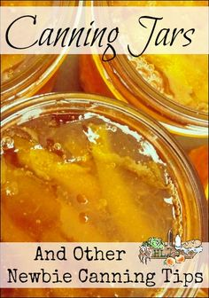 Canning Jars and Other Newbie Canning Tips