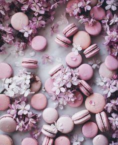 Linda Lomelino Macarons food photography