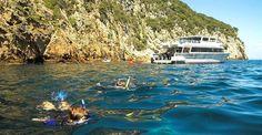 Tutukaka, Tutukaka Coast, Northland, New Zealand - Official Tutukaka Coast Website including accommodation, activities, places to eat, shopping, maps — Tutukaka Coast