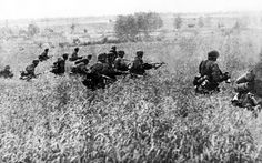 Infantry of the 1st Leibstandarte SS Adolf Hitler advance through a grain field during Operation Barbarossa, 1941