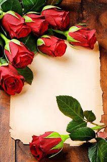 اجمل صور و خلفيات تصميم للكتابة عليها 2021 Flower Frame Red Roses Rose Frame
