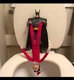 holy cow batman