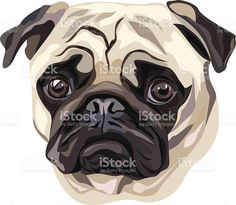 Dog Vector, Vector Art, Shiloh Dog, Lola The Pug, Pug Art, Animal Sketches, Watercolor Animals, Pug Love, Animal Paintings