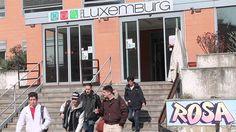 Gesto di solidarietà da parte di Mobility Center per l'installazione di un nuovo montascale all'Istituto professionale Rosa Luxemburg di Milano.
