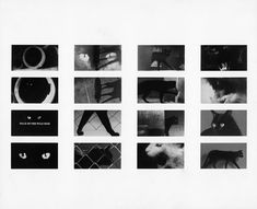 """Evidence, scholarship and debate: Saul Bass and the shower scene in """"Psycho"""": Design Observer"""