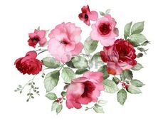 kwiaty na czarnym tle malarstwo - Szukaj w Google