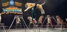Don't Miss Your Chance To Say Goodbye To The Elephants! Ringling Bros & Barnum and Bailey Circus: XTREME 2016 In Cincinnati