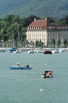 Swan & Boats, Zurich, Switzerland