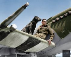 Wing Commander James Edgar 'Johnnie' Johnson DSO & 2 Bars, DFC & Bar, commanding No. 144 (Canadian) Wing, on the the wing of his Supermarine Spitfire Mk IX with his Labrador retriever 'Sally', at Bazenville Landing Ground in Normandy. 31st of July 1944.  (Colourised by Benjamin Thomas)