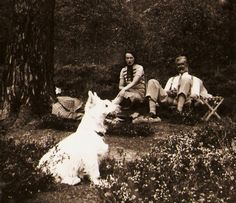 Real Photo Postcard RPPC White Scottie Dog At Picnic With Lady And Gentleman With Moustache