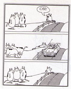 far side comics | ... Remote Camera Deer Footage, Or: When Far Side Comics Come to Life