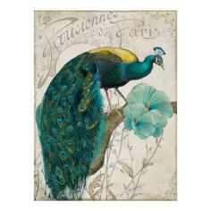 Shop Les Paons II Vintage Peacocks Art Nouveau Poster created by colorbakery. Personalize it with photos & text or purchase as is! Art Nouveau Poster, Poster Art, Poster Prints, Art Prints, Peacock Decor, Peacock Colors, Peacock Feathers, Peacock Artwork, Peacock Drawing