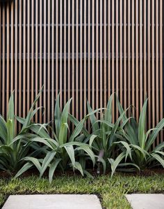 Inspiration #55: Modern vertical fence   L² Design, LLC Backyard Pool Landscaping, Tropical Landscaping, Tropical Garden, Back Gardens, Small Gardens, Outdoor Gardens, Modern Fence, Fence Design, Garden Inspiration
