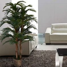 Eye-Opening Tips: Artificial Plants Outdoor Palm Trees artificial flowers fall.Artificial Flowers Fun artificial plants living room home. Fake Plants, Artificial Plants, Plants Indoor, Potted Trees, Palm Trees, Yucca Tree, Fiddle Leaf Fig Tree, Boxwood Topiary, Floor Plants