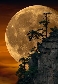 Can This Photo by Peter Lik Possibly Be Real?-Can this Photo by Peter Lik Possibly be Real? Peter Lik, whom many believe is the world& most … - Beautiful Nature Wallpaper, Beautiful Landscapes, Most Beautiful Paintings, Moon Photography, Landscape Photography, Peter Lik Photography, Moonlight Photography, Moon Images, Full Moon Photos