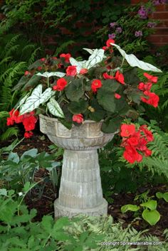 shade garden focal points | Shade garden Planter
