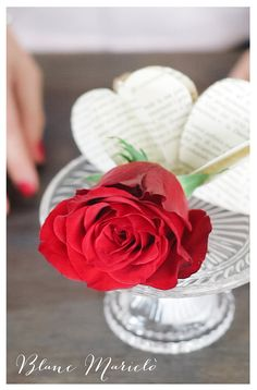 st valentine's day diy blanc mariclo  video tutorial