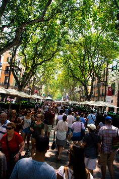 La Rambla Barcelona..vacationed 2 weeks on costa brava, Barcelona, Spain..stayed 30 miles north/Caldetas.