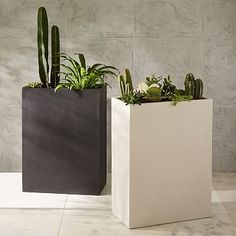 $239 x 2.  Cityscape Planters - Tall Double #westelm.  Order cream and gray