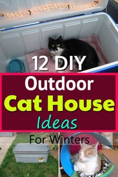 11 delightful outdoor cat house diy images dog cat pets outdoor rh pinterest com
