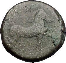 CARTHAGE ZEUGITANA 201BC Tanit Horse LARGE 3 Shekels Ancient Greek Coin i56321