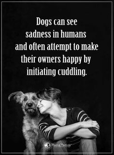 Dog Quotes, Dogs can sense your happiness and sadness, and they try their best to cheer you up. Dog Quotes Love, Up Quotes, I Love Dogs, Puppy Love, Cute Dogs, Pet Sitter, Dog Rules, Animal Quotes, Happy Dogs