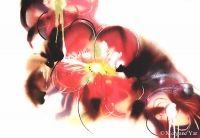 www.my-creations.net  Les Fleurs du Mal (to sell) Vernissage: 22.10.2015 (Lausanne) Lausanne, Creations, Deco, Painting, Design, The Flowers Of Evil, Painting Art, Decor, Deko