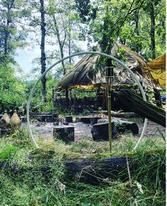 Surrey Hills Yurts is a stunning glamping site nestled in the heart of the Surrey Hills