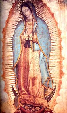 Today we celebrate Our Lady of Guadalupe -- one of my favorites Marian feast days. Our Lady of Guadalupe, patroness of the Americas, bri. Blessed Mother Mary, Blessed Virgin Mary, Catholic Prayers, Catholic Art, Catholic Saints, Roman Catholic, Catholic Daily, Catholic Beliefs, Catholic Online